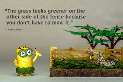 Photograph - Minion Quote 5 by Tim Nichols