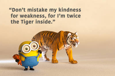 Photograph - Minion Quote 7 by Tim Nichols