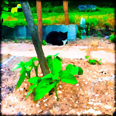 Photograph - Minnie And The Beanstalk 2 by Ronda Broatch