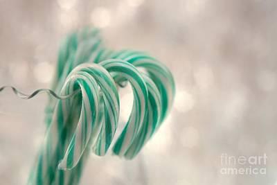 Photograph - Mint Bokeh by Karin Pinkham
