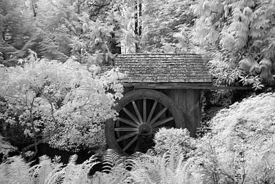 Photograph - Minter Water Wheel by Bill Kellett