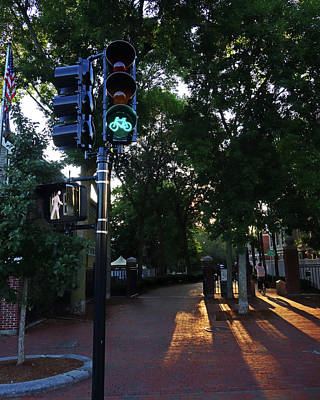 Photograph - Minuteman Trail Cambridge Ma Bicyclists Bike Trail Bike Green Light by Toby McGuire