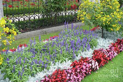 Photograph - Mirabell Palace Garden by Carol Groenen