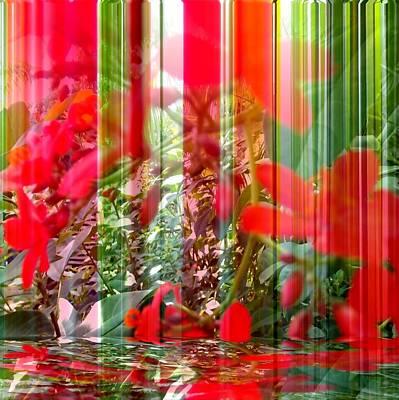 Digital Art - Mirage by Carolyn Repka