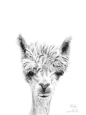 Animals Drawings - Mirko by K Llamas