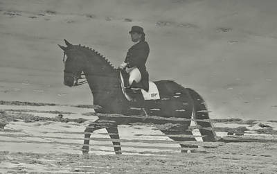 Photograph - Mirror Image Dressage by Jamart Photography