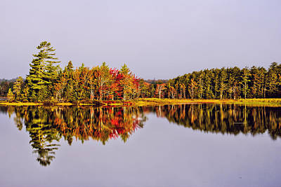 Kathleen Photograph - Mirror Of Beauty by Kathleen Sartoris