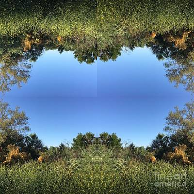 Photograph - Mirrored by Nora Boghossian