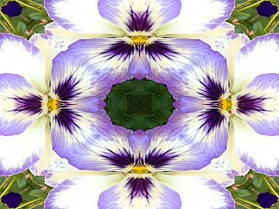 Pansies Photograph - Mirrored Pansies - Horizontal by Jon Woodhams