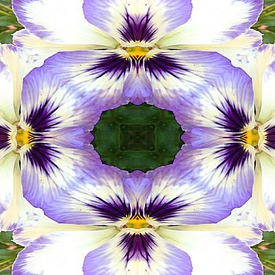 Pansies Photograph - Mirrored Pansies - Square by Jon Woodhams