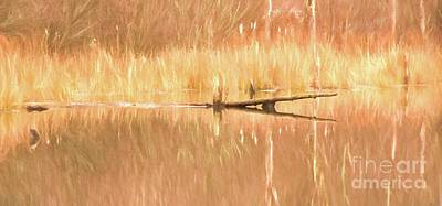 Photograph - Mirrored Reflection by Laurinda Bowling