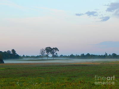 Photograph - Pink  Sky And Misty Pasturess by Expressionistart studio Priscilla Batzell