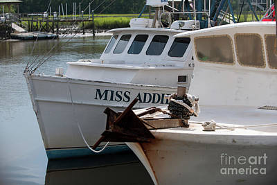Photograph - Miss Addie by Dale Powell