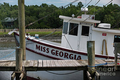 Photograph - Miss Georgia by Dale Powell