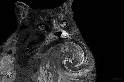 Photograph - Miss Kitty Portrait Pop Art Bw by Lesa Fine