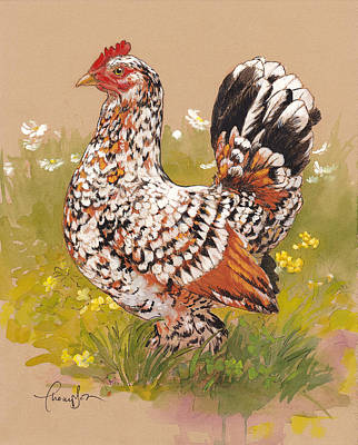 Chicken Painting - Miss Millie Fleur by Tracie Thompson
