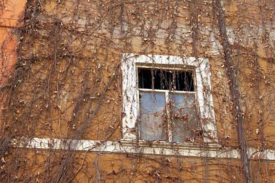 Missing The Leaves Original by Munir Alawi