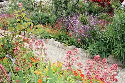 Photograph - Mission Garden by Carol Groenen