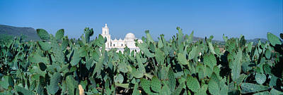 Mission San Xavier Del Bac Art Print by Panoramic Images