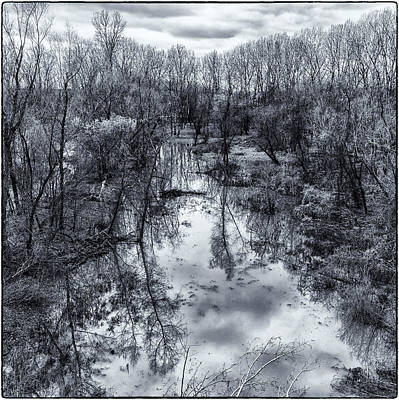 Photograph - Mississippi River Wet Land Monotone Dsc09550-1-2 by Greg Kluempers