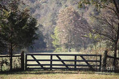 Photograph - Missouri Driveway by Anthony Cornett