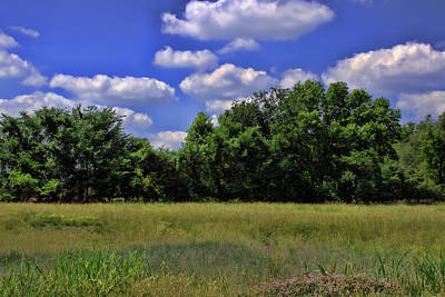 Photograph - Missouri Landscape by Tim McCullough