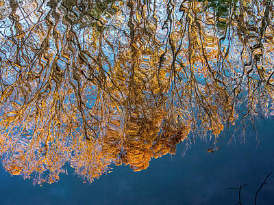 Photograph - Missouri Reflection by Jean Noren