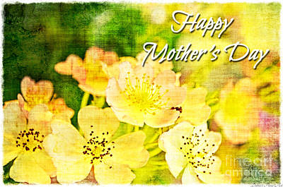 Photograph - Missouri Wildflower Mix 3  -  Mother's Day Greeting Card by Debbie Portwood