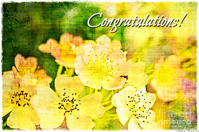 Photograph - Missouri Wildflower Mix 3 - Congratulations Greeting Card by Debbie Portwood