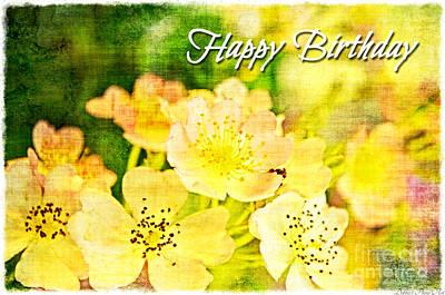 Photograph - Missouri Wildflower Mix 3 -  Happy Birthday Card by Debbie Portwood