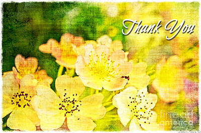 Photograph - Missouri Wildflower Mix 3 - Thank You Greeting  Card by Debbie Portwood