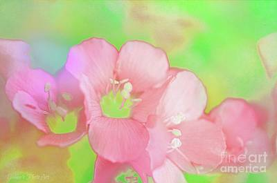 Photograph - Missouri Wildflowers 5  - Polemonium Reptans -  Digital Paint 7 by Debbie Portwood
