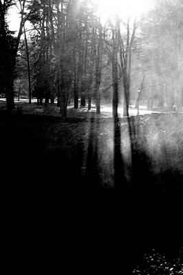 Mist An Black Art Print