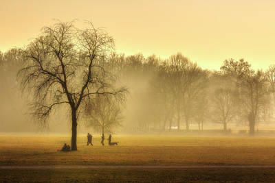 Photograph - Mist At Park by Roberto Pagani