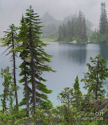 Mt Rainier Photograph - Mist At Snow Lake by Charles Robinson