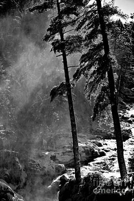 Photograph - Mist by Elfriede Fulda