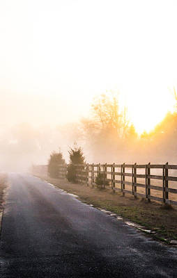 Photograph - Mist In The Morning by Shelby  Young