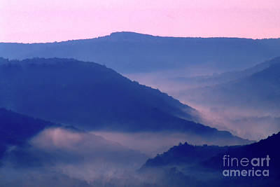 Photograph - Mist In Williams River Valley  by Thomas R Fletcher