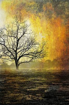 Photograph - Mist Of Confusion by Jan Amiss Photography