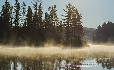 Photograph - Mist On Costello Lake by Jale Fancey
