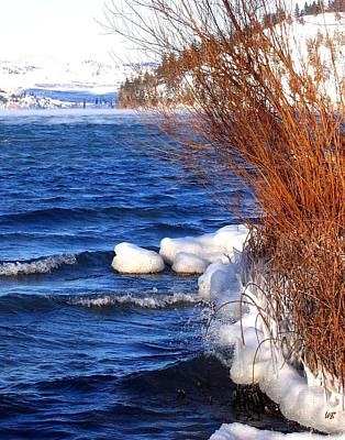 Willow Lake Photograph - Mist On Kalamalka by Will Borden