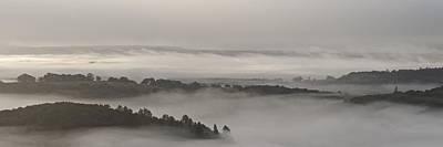 Photograph - Mist Over Aberfoyle by Stephen Taylor