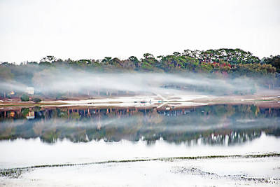 Photograph - Mist Over Spring Lake II by Gina O'Brien