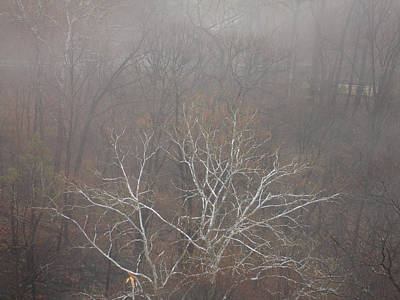 Photograph - Mist Over The Hudson by Lynda Lehmann