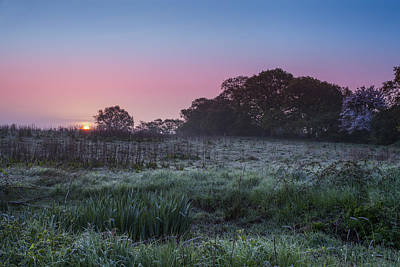 Photograph - Mist Over The Marsh by Stewart Scott