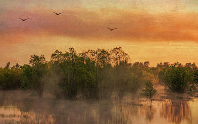 Photograph - Mist Rising by Don Schwartz
