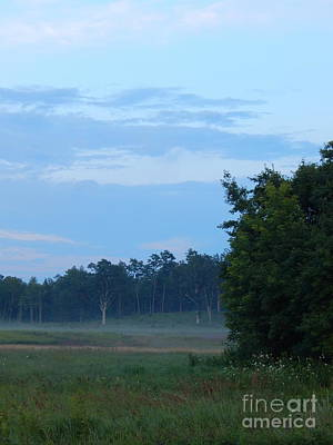 Photograph - Mist Rolls In And Blue Sky At Sunset by Expressionistart studio Priscilla Batzell