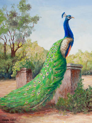 Painting - Mister Peacock by Glenda Cason