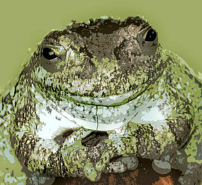 Photograph - Mister Toad by Kathleen Stephens