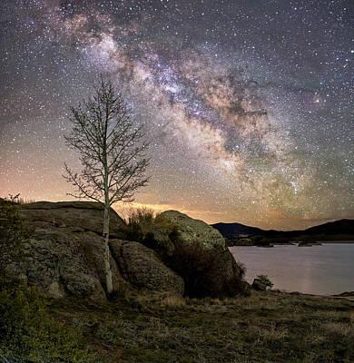 Creative Charisma - Mistic Tree Under The Stars by David Soldano